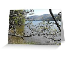 Loch Ness from the south bank Greeting Card