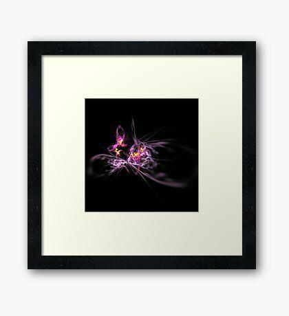 Iris Aflame 2 Framed Print