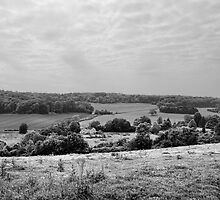 View Over Crundale by Dave Godden