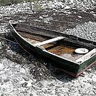 Distressed Dinghy, Rye, New Hampshire by Nina-Rosa