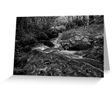 Becky Falls Down Stream Greeting Card