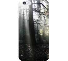 The Sun Shining Through the Trees iPhone Case/Skin