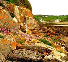 Rocky Shoreline by Fara