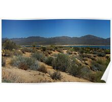 Bartlett Lake Panorama Poster