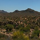 Superstition Mountains Panorama by John  Kapusta