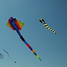 Kites  by John  Kapusta