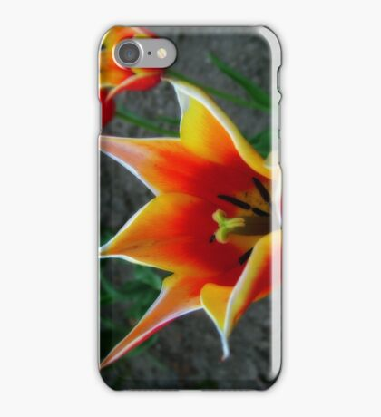Tulips 4 iPhone Case/Skin