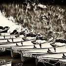 Boats'n'seagulls! by Maree Cardinale