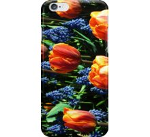 Tulips 12 iPhone Case/Skin