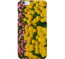 Tulips 13 iPhone Case/Skin
