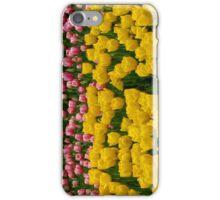 Tulips 13 iPhone Case/Skin