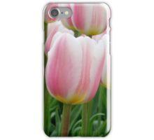 Tulips 15 iPhone Case/Skin