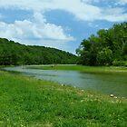 Doe Run Creek Kenton County, Ky. USA by Ron Russell
