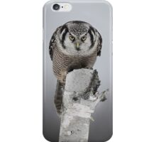Northern Hawk-Owl iPhone Case/Skin