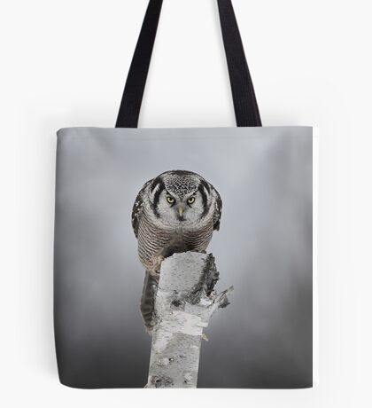 Northern Hawk-Owl Tote Bag