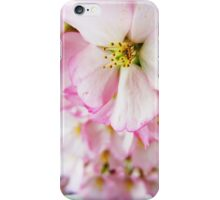 Cherry Blossoms 7 iPhone Case/Skin