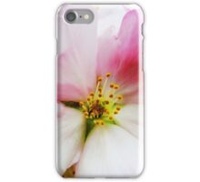 Cherry Blossoms 8 iPhone Case/Skin