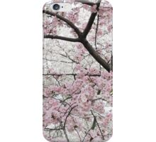 Cherry Blossoms 10 iPhone Case/Skin