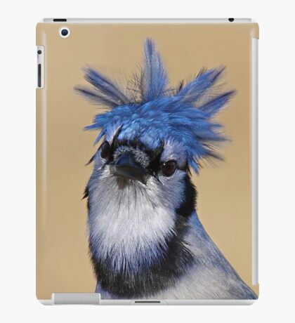 Is that you Don King? - Blue Jay iPad Case/Skin