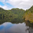 Gordon River, Tasmania by Colgal