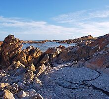 West Point on the West Coast of Tasmania by Colgal