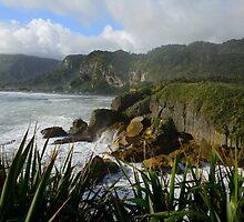 Sea of New Zealand by Alessandro Fraracci