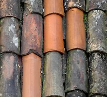 Old and new roof tiles by M. van Oostrum