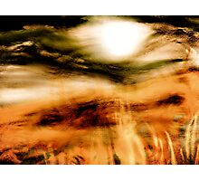 sun through the mist Photographic Print
