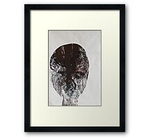 papilio aegeus ,butterfly mask Framed Print