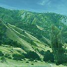 Green Hill by cadellin