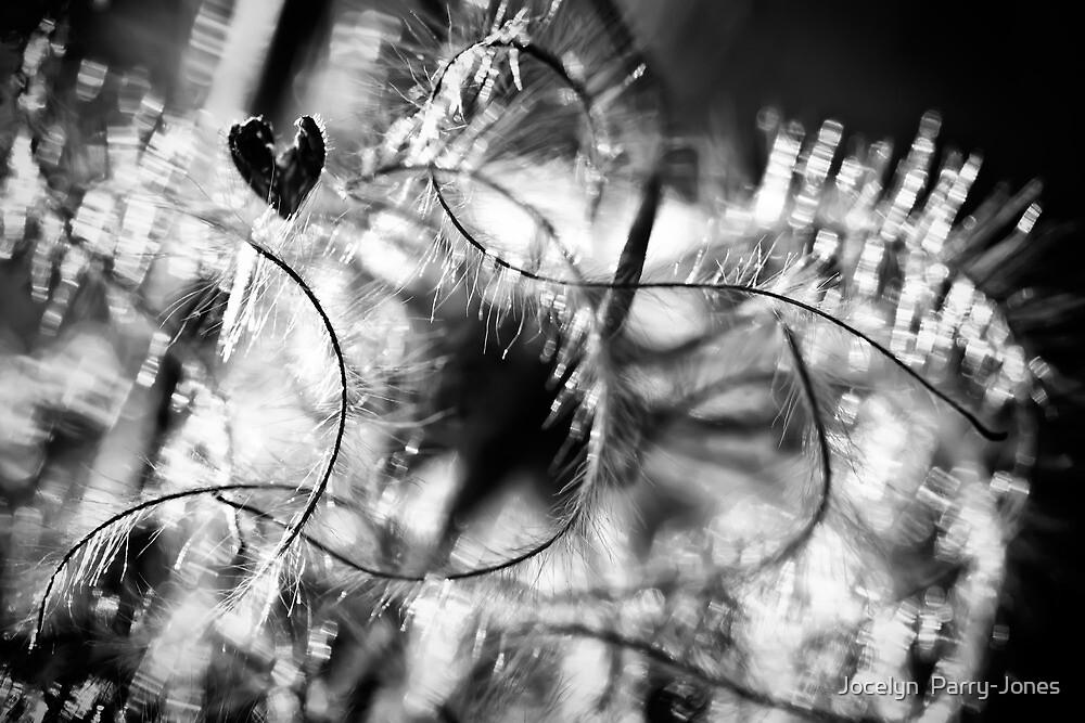 Have a heart by Jocelyn  Parry-Jones