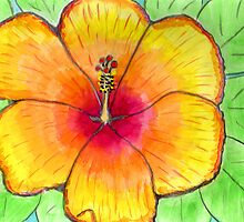 hibiscus 1 by Hbeth
