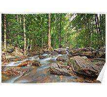 Florence Falls Creek Landscape Poster