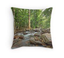 Florence Falls Creek Landscape Throw Pillow