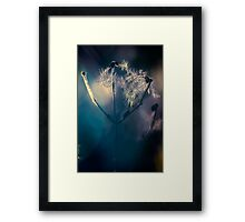 Colour of light Framed Print