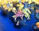 Dreaming Reef by Stephanie Bateman-Graham