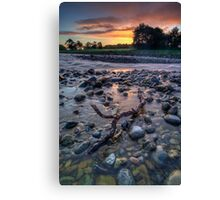 Pastel Dawn Driftwood Canvas Print