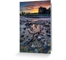 Pastel Dawn Driftwood Greeting Card