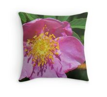 Wild Prairie Rose Throw Pillow
