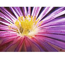 Purple Flower Watercolour Photographic Print