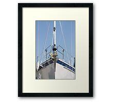 king of the high seas Framed Print