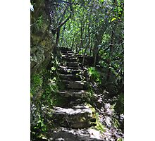 Magical pathway Photographic Print