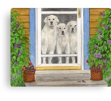 Great Pyrenees Dogs Porch Cathy Peek Animals Canvas Print