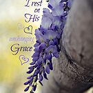 Unchanging Grace by reindeer