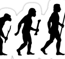 Lacrosse Evolution Sticker