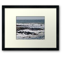 Gulls amid the Spray Framed Print