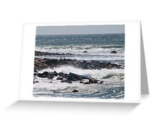 Gulls amid the Spray Greeting Card