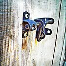 the locked door by Jamie McCall