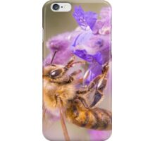 Honey Bee on Russian Sage iPhone Case/Skin