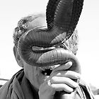 Snake Charmer Marrakesh Morocco by Debbie Pinard